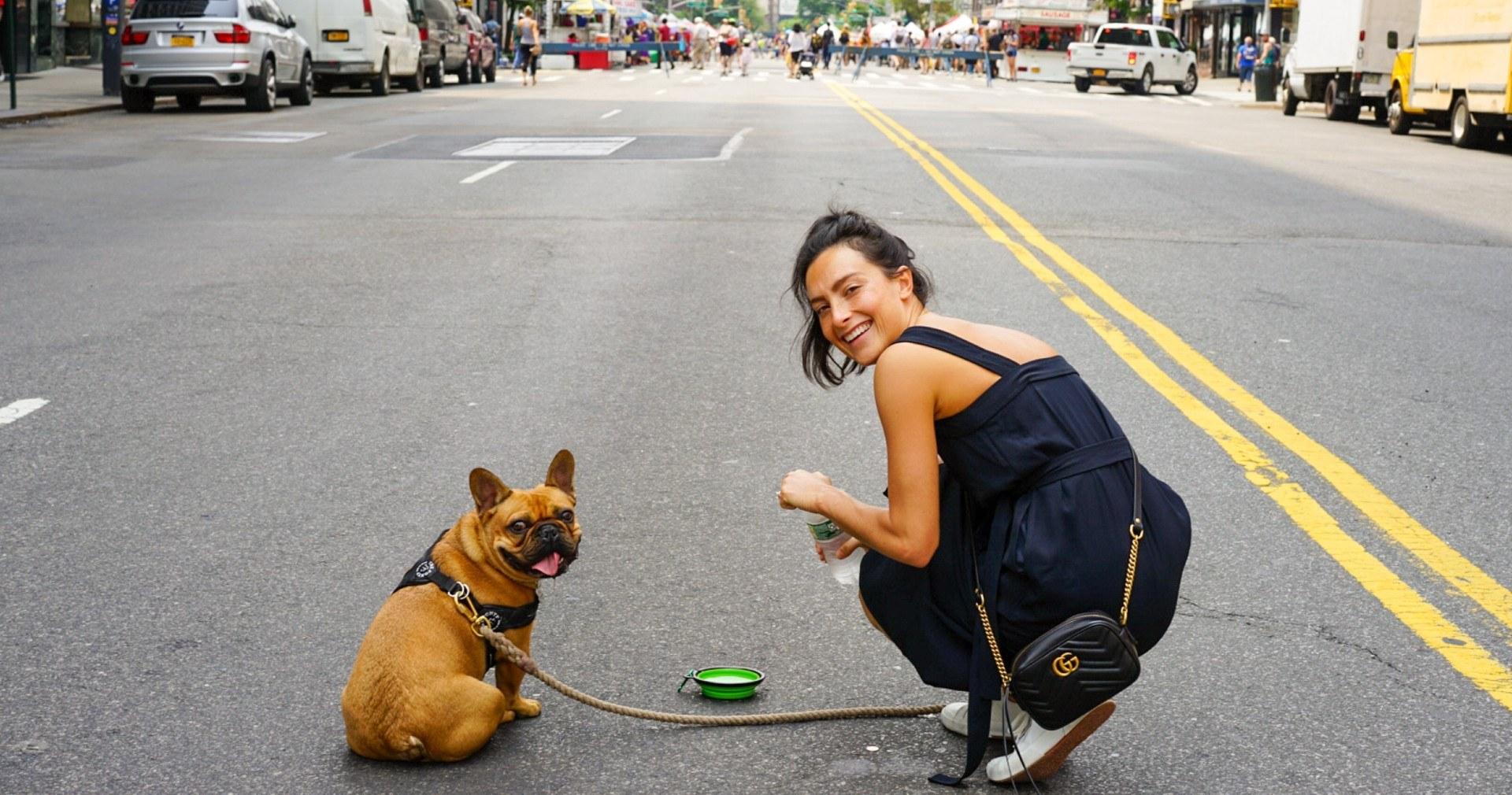 DC neighborhoods perfect for puppies