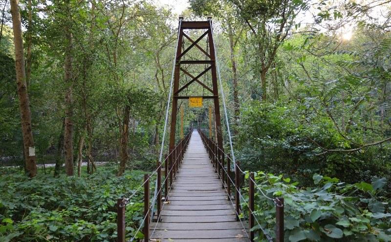 Patapsco_Swinging_Bridge.jpg?mtime=20201110101025#asset:37475