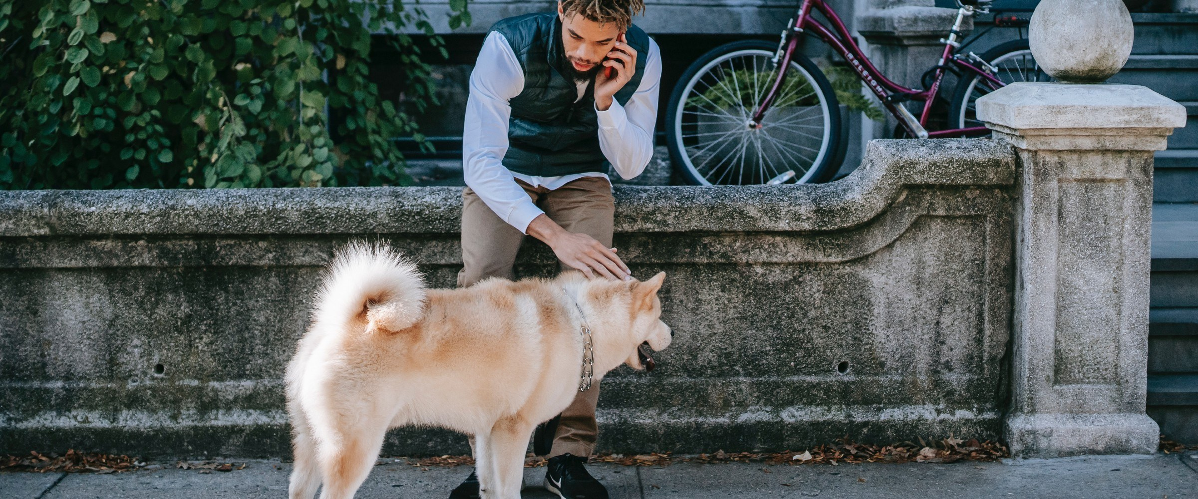 best neighborhoods in DC for dog owners